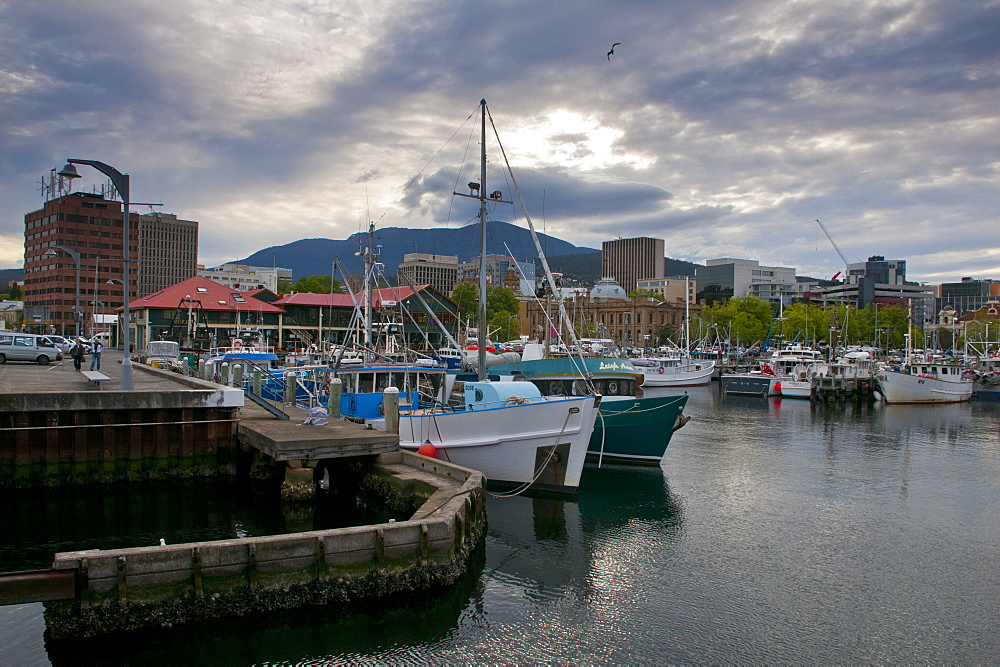 The harbour area of Hobart, Tasmania, Australia, Pacific