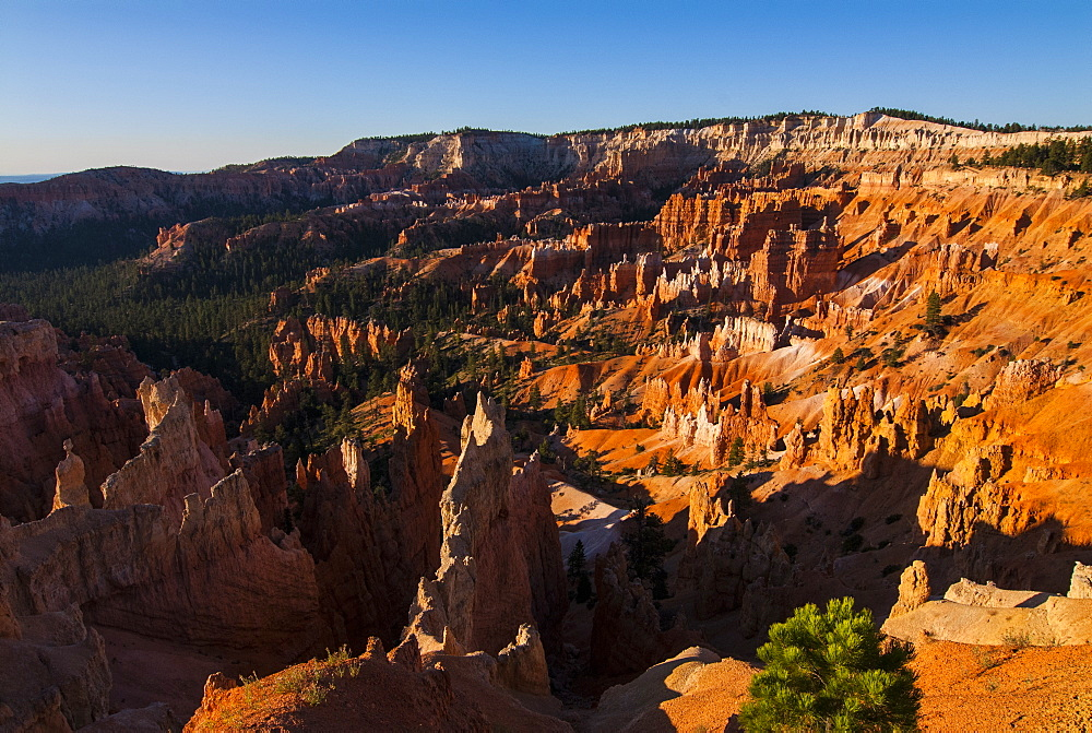 View over the pinnacles in the beautiful rock formations of Bryce Canyon National Park, Utah, United States of America, North America