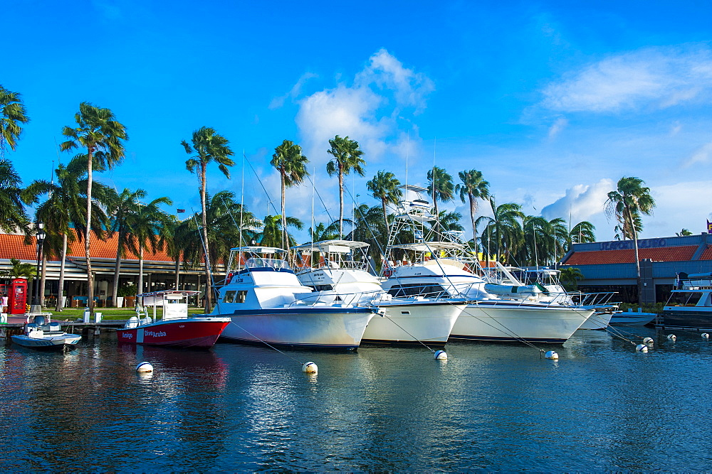 Yacht harbour in downtown Oranjestad, capital of Aruba, ABC Islands, Netherlands Antilles, Caribbean, Central America