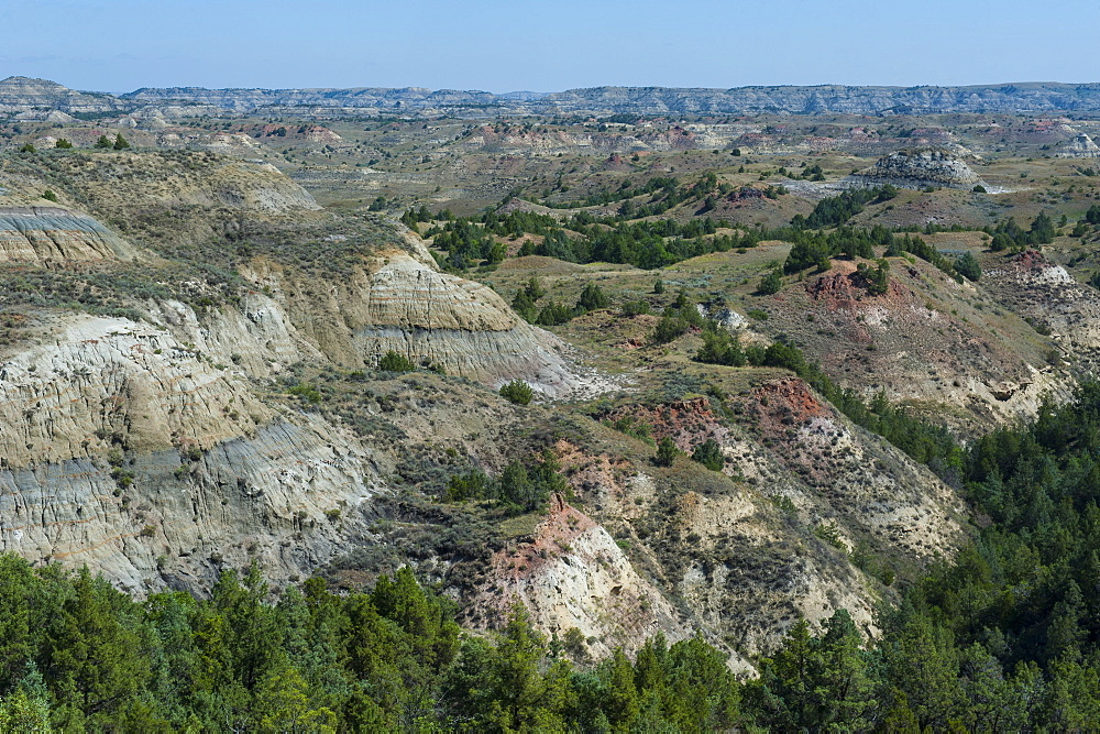 Roosevelt National Park, North Dakota, United States of America, North America