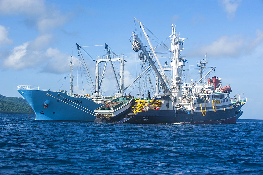 Chinese fishing trawlers, Pohnpei (Ponape), Micronesia, Central Pacific, Pacific
