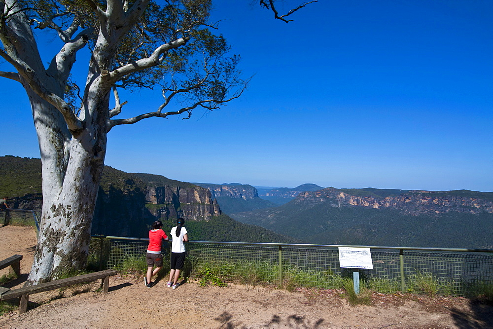 Viewing platform on top of the Blue Mountains, New South Wales, Australia, Pacific