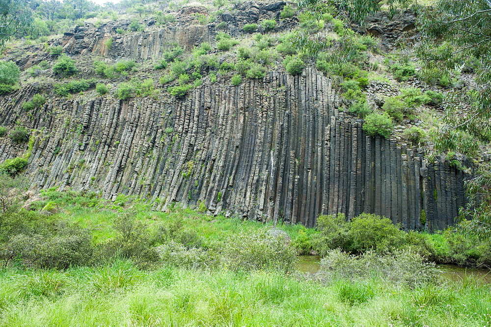 Unique rock formation in the Organ Pipes National Park, Victoria, Australia, Pacific