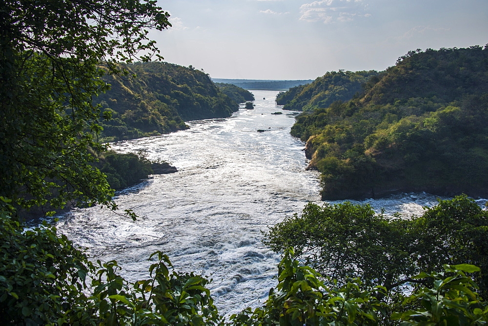 Murchison Falls, also known as Kabarega Falls on the Nile, Murchison Falls National Park, Uganda, Africa