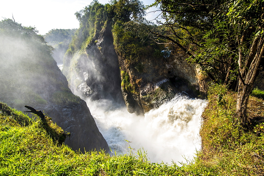 Murchison Falls (Kabarega Falls) on the Nile, Murchison Falls National Park, Uganda, East Africa, Africa