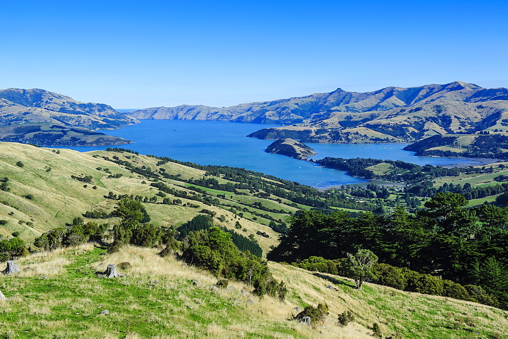 Beautiful scenery around Akaroa harbour, Banks Peninsula, Canterbury, South Island, New Zealand, Pacific