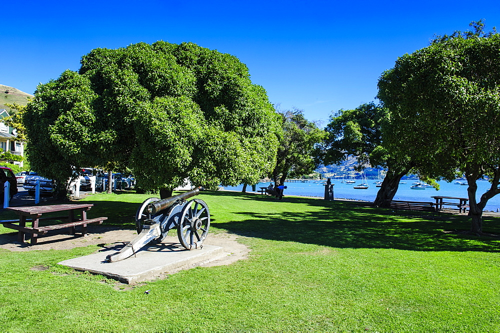 Old cannon in a park in Akaroa, Banks Peninsula, Canterbury, South Island, New Zealand, Pacific