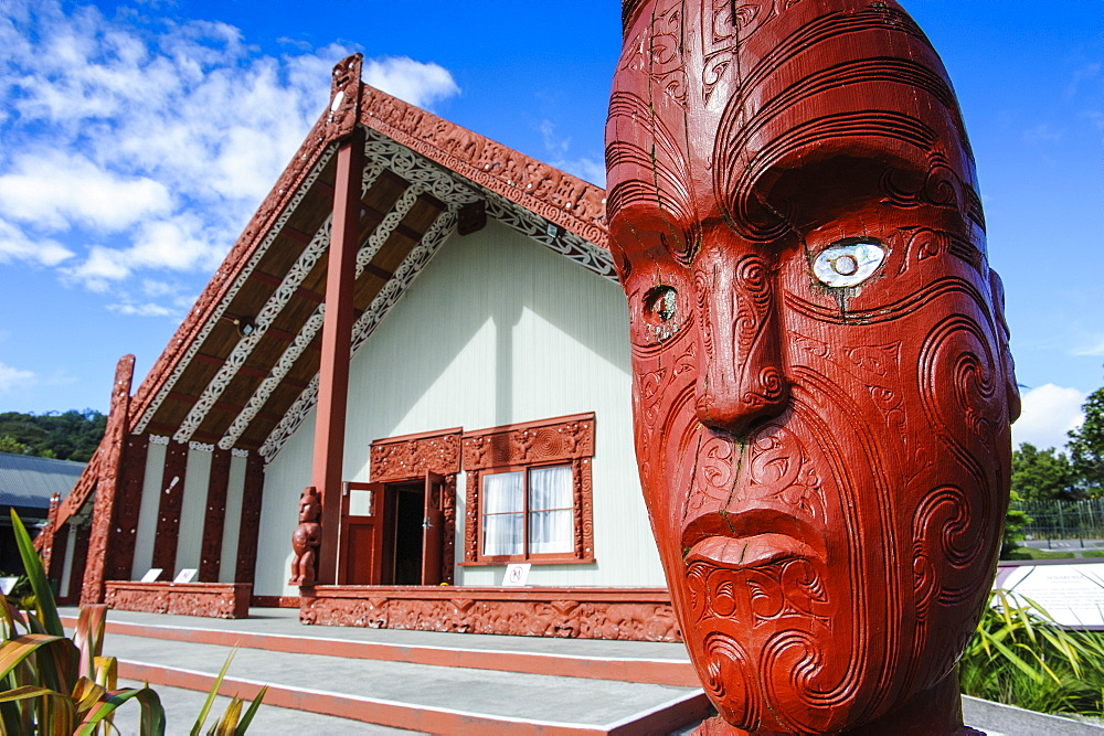 Traditional wood carved mask in the Te Puia Maori Cultural Center, Rotorura, North Island, New Zealand, Pacific - 816-6714