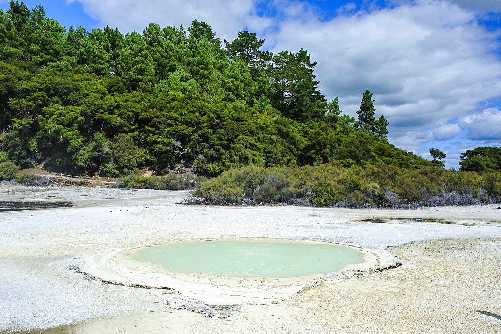 Geoactive thermal pool, Wai-O-Tapu Thermal Wonderland, Waiotapu, North Island, New Zealand, Pacific