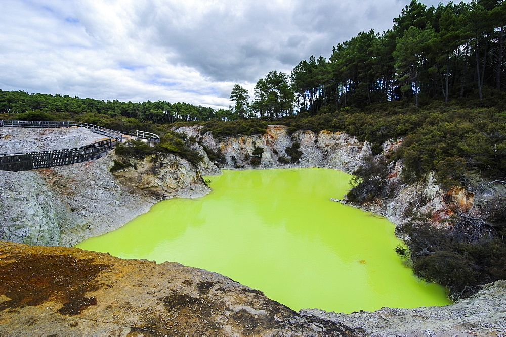 Very green acid crater in the Wai-O-Tapu Thermal Wonderland, Waiotapu, North Island, New Zealand, Pacific
