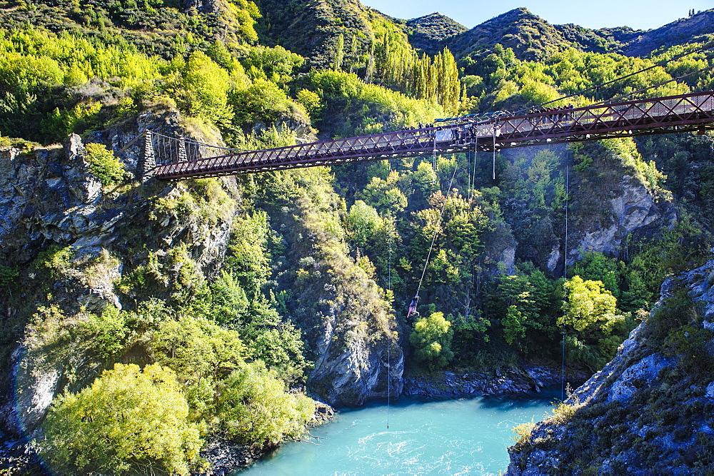 AJ Hackett Bungy jumping on the Kawarau bridge over the Kawarau River near Queenstown, Otago, South Island, New Zealand, Pacific