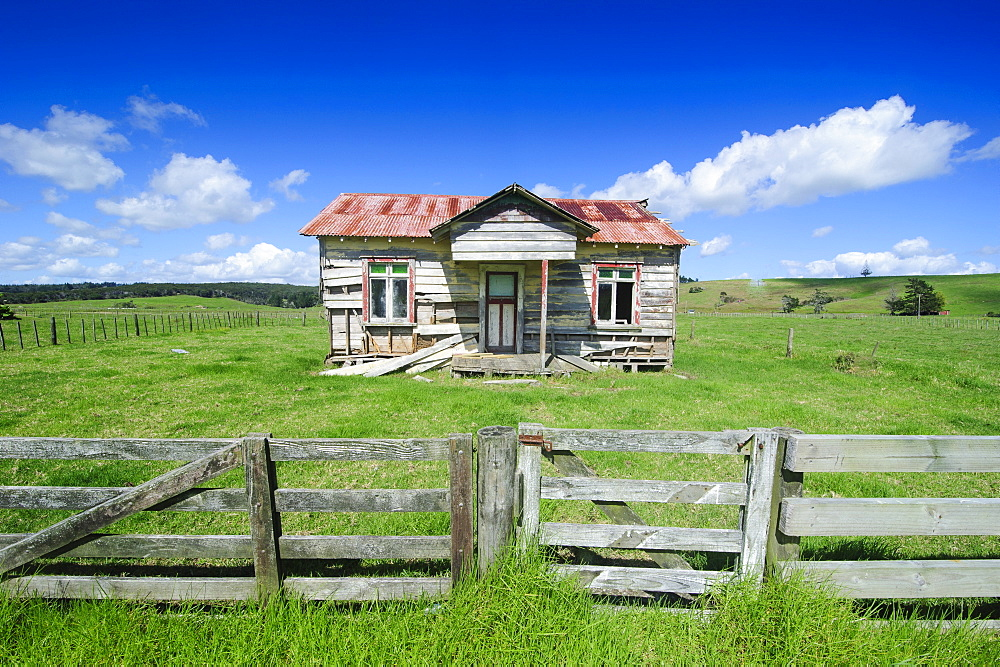 Old farming cottage, West coast, Northland, North Island, New Zealand, Pacific