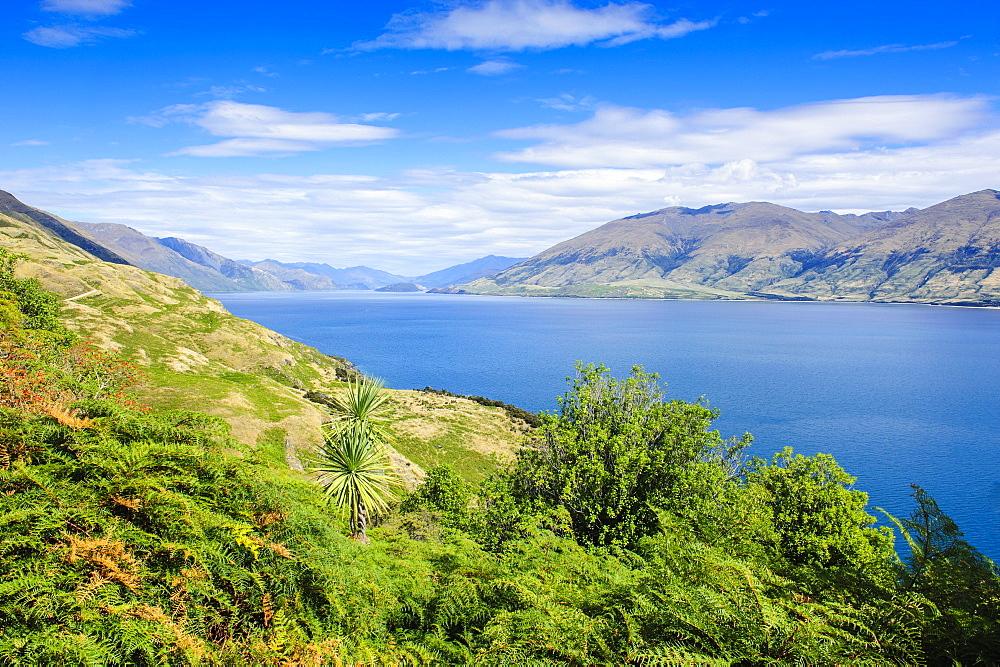Lake Hawea, Haast Pass, South Island, New Zealand, Pacific