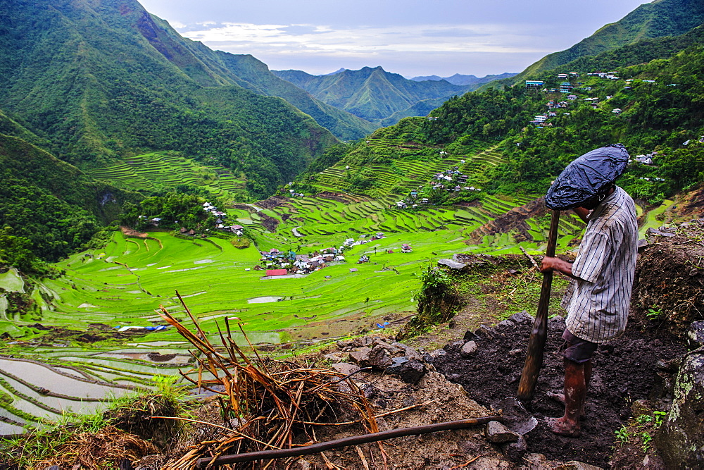 Man working in the Batad rice terraces, part of the UNESCO World Heritage Site of Banaue, Luzon, Philippines, Southeast Asia, Asia