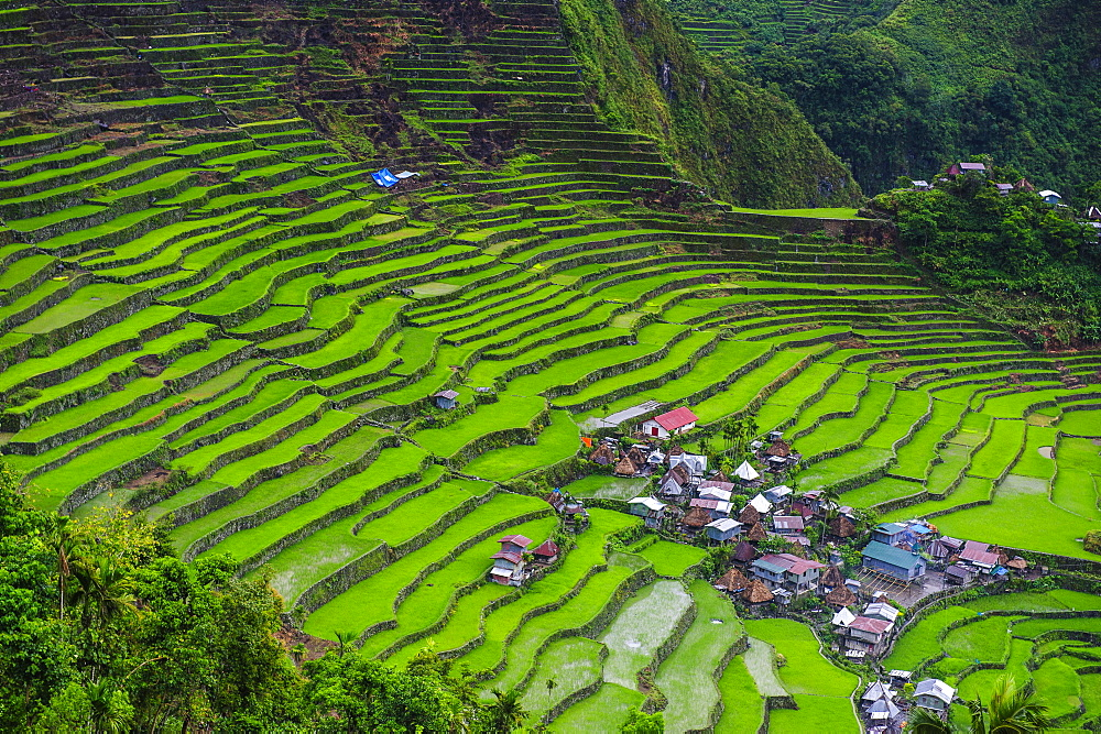 Batad rice terraces, part of the UNESCO World Heritage Site of Banaue, Luzon, Philippines, Southeast Asia, Asia
