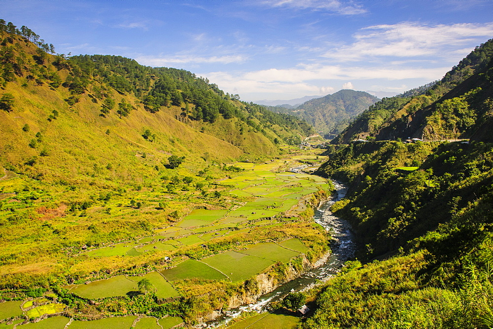Along the rice terraces from Bontoc to Banaue, Luzon, Philippines, Southeast Asia, Asia