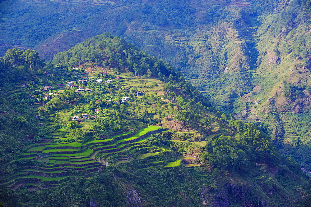 View from Kiltepan tower over the rice terraces, Sagada, Luzon, Philippines, Southeast Asia, Asia