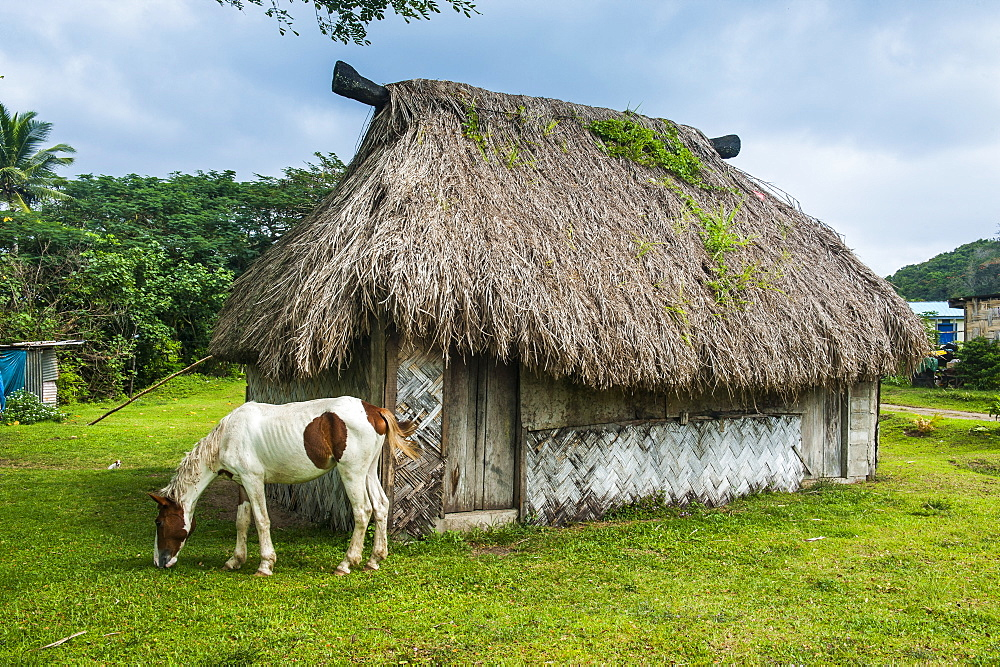 Traditional house on the Coral Coast, Viti Levu, Fiji, South Pacific, Pacific