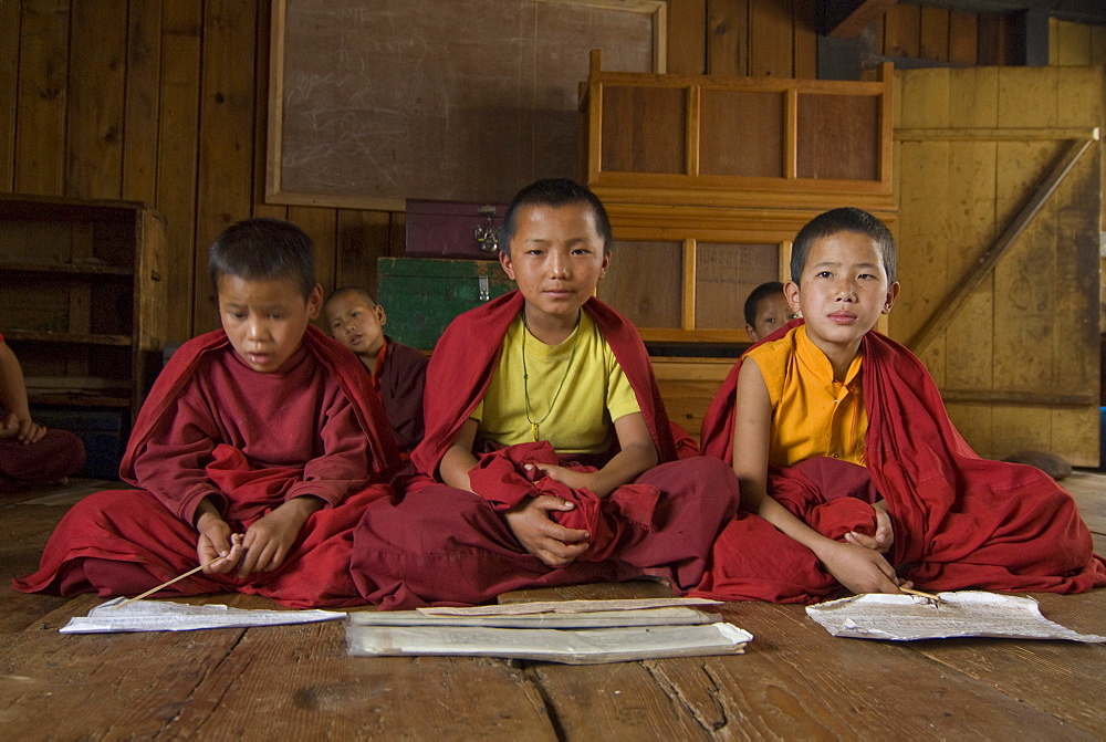 Group of young Buddhist monks learning, Chimi Lhakhang, Bhutan, Asia
