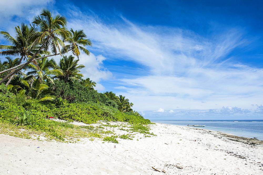 Palm fringed Kolovai beach, Tongatapu, Tonga, South Pacific, Pacific