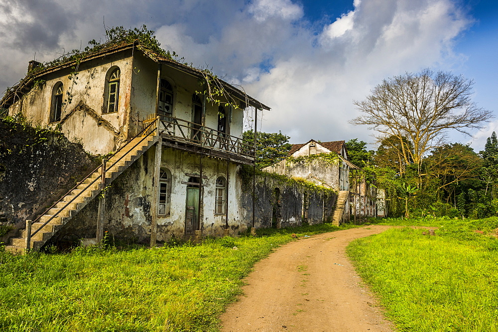 Decaying houses in the old plantation Roca Bombaim in the jungle interior of Sao Tome, Sao Tome and Principe, Atlantic Ocean, Africa