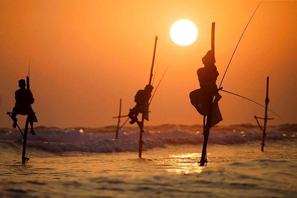 Stilt fishermen in Kogalla, Sri Lanka