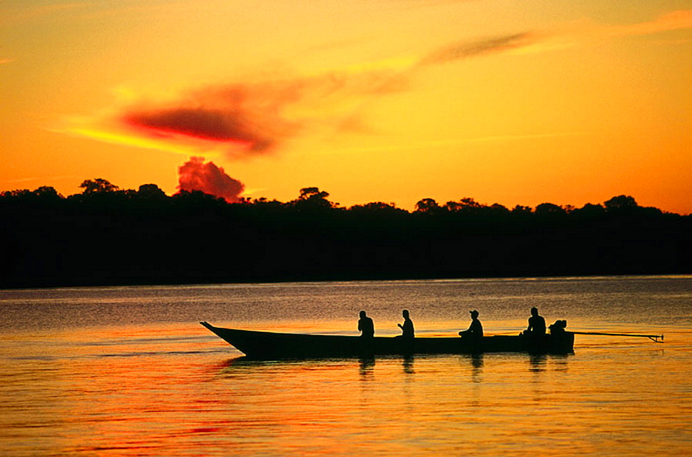 Amazon River, Rio Negro, Brazil - 817-10357