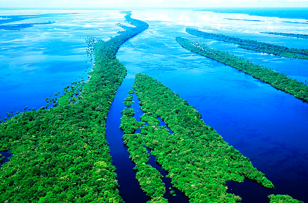 Archipelago of Anavilhanas at Amazon River, Brazil - 817-10364