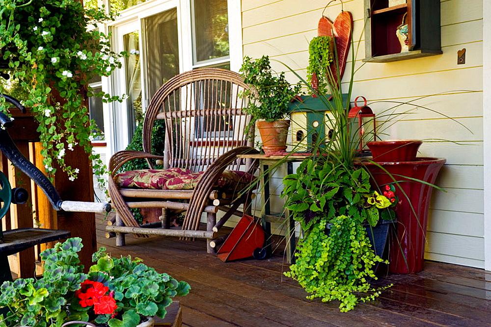 Twig chair, plants in containers, small fountain on front porch (Pelargonium cv.; Sutera cordata; Solenostemon scutellarioides), Beebe, Blaine, WA.