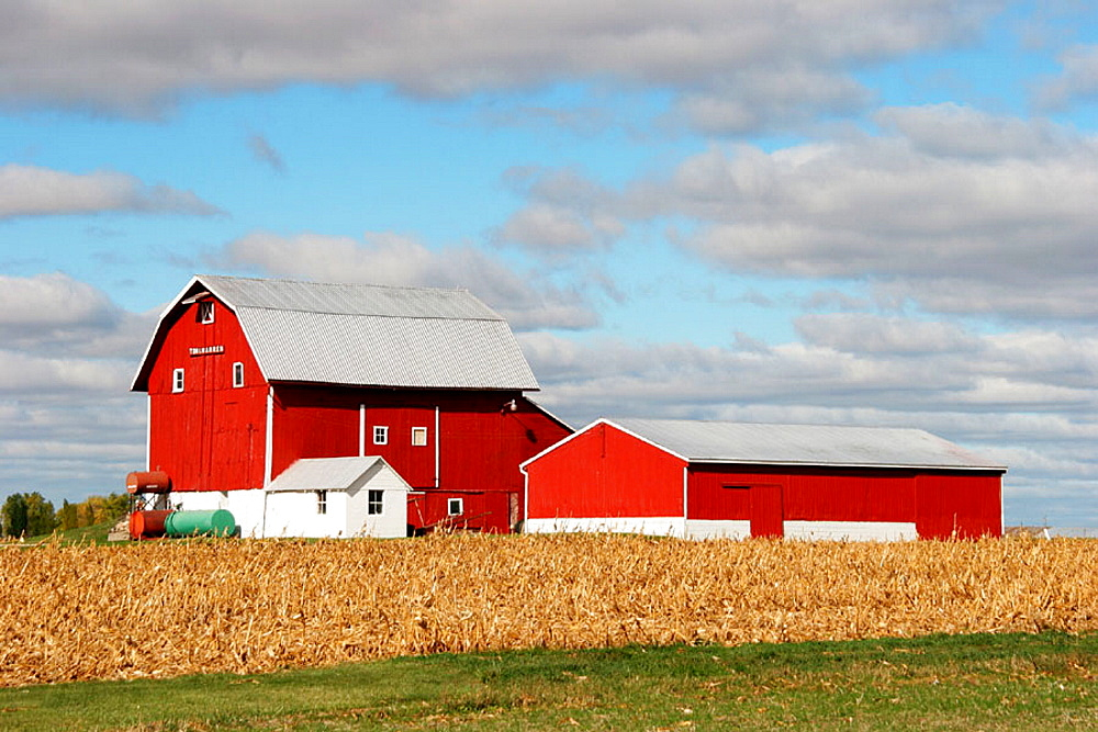 Red barn, rural, country, cornfield, agriculture, Mulliken, Michigan, USA