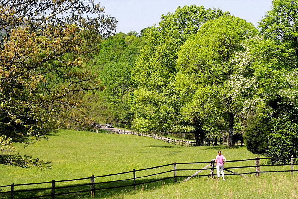 Virginia, Roanoke, Blue Ridge Parkway, Appalachian Mountains, pasture, fence, woman,