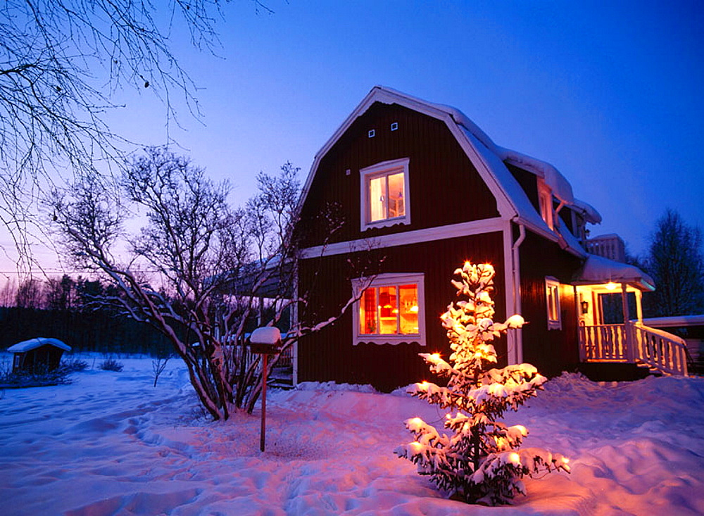 Christmas tree in front of a red house, Medle, Vasterbotten, Sweden