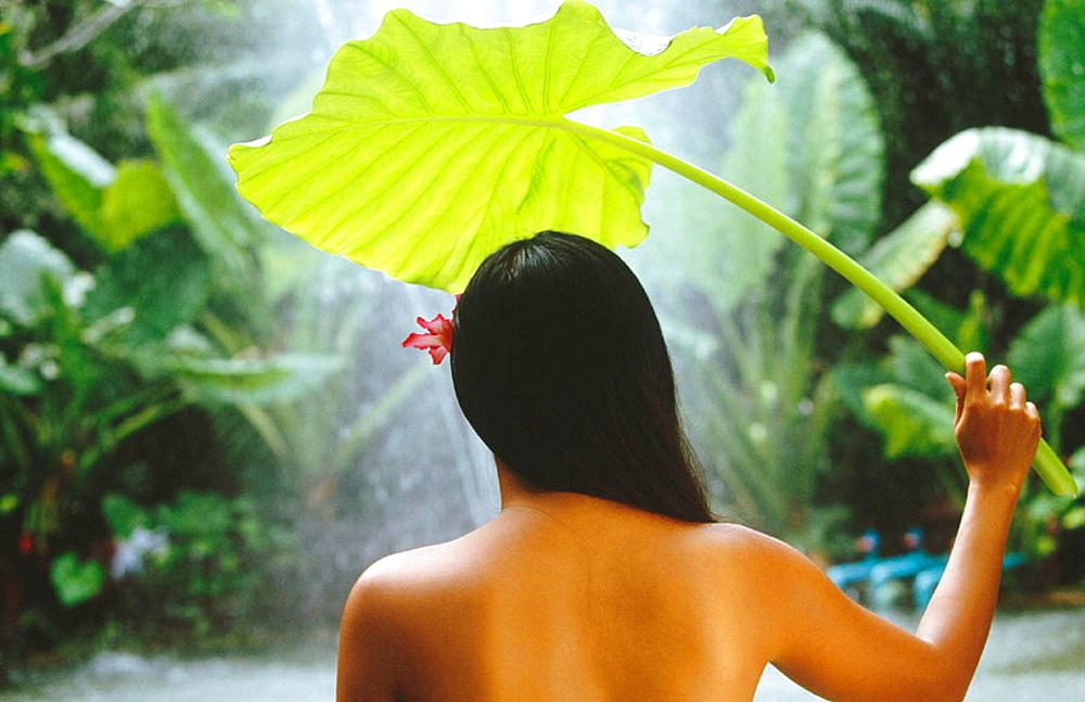 Woman in spa, Koh Samui island, Thailand - 817-113325