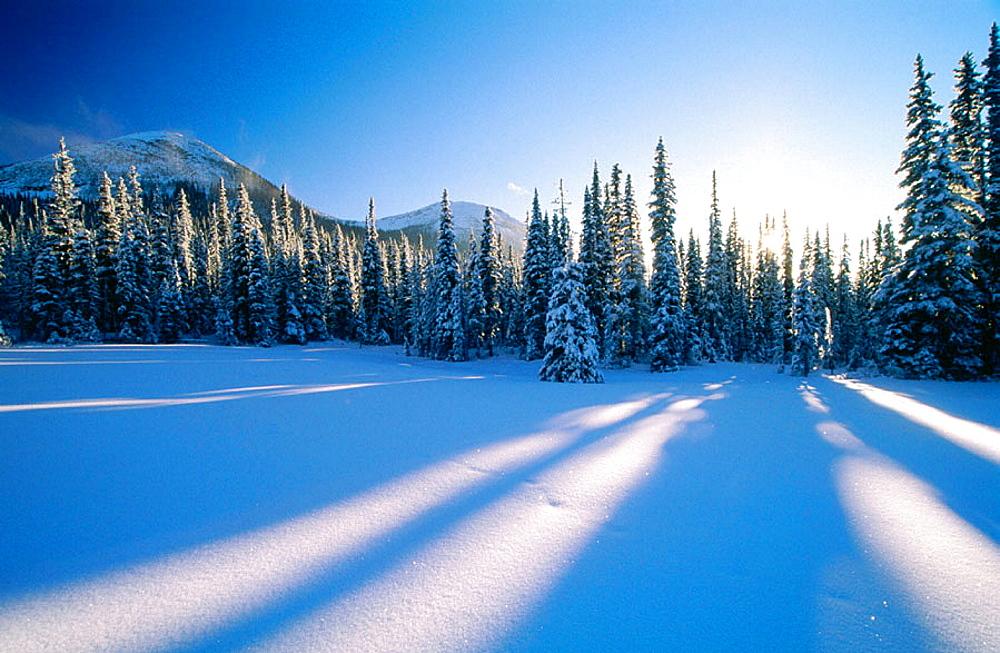 Viking Ridge in Prince George region, British Columbia, Canada