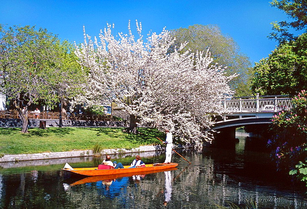 Punting on the Avon River in spring Christchurch New Zealand