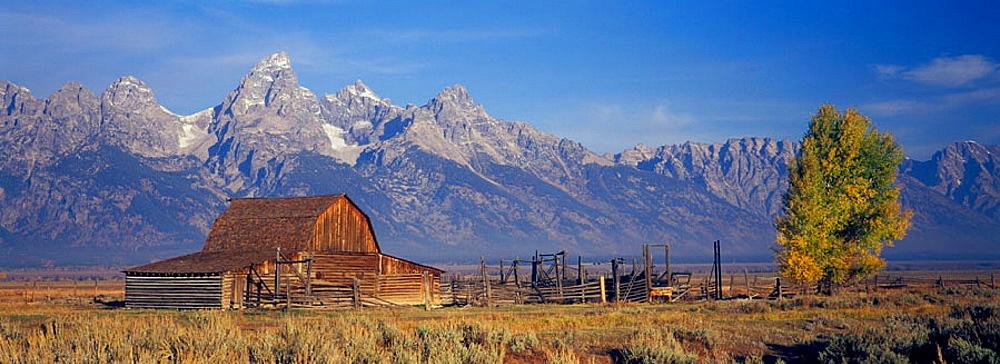 Mormon Row barn in front of Grand Teton Range, Antelope Flats, Grand Teton National Park, Wyoming, USA