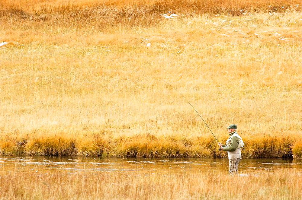 Firehole River, Fly Fishing, Yellowstone National Park, Wyoming, USA