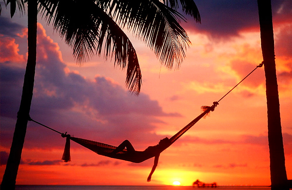 Woman asleep in hammock against palm trees and tropical sunset sky - 817-122508