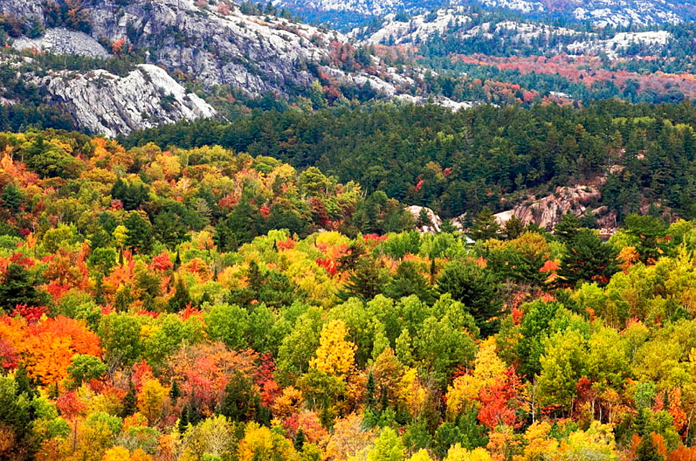 Silver Peak and fall colour from Granite Ridge viewpoint, Killarney Provincial Park, Ontario, Canada