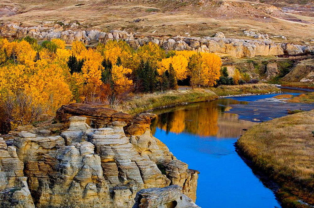 Sandstone hoodoos with fall cottonwoods in Milk River Valley, Writing On Stone Provincial Park, Alberta