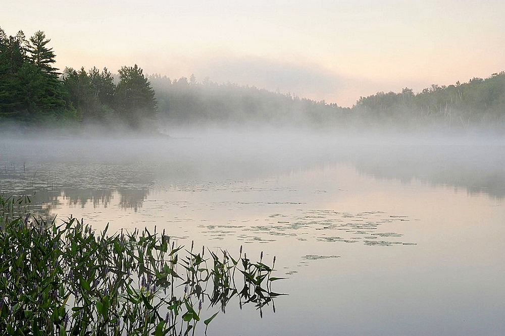 Elbow Lake with morning mists at dawn
