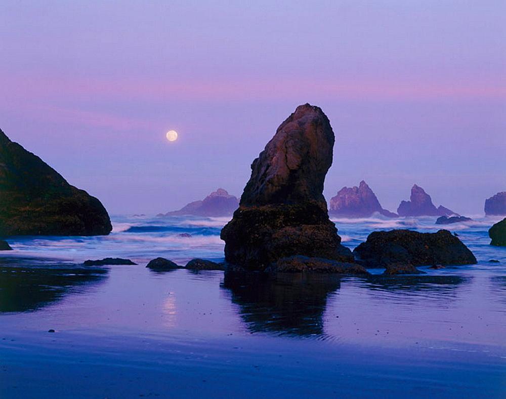 Moon sets over sea stacks at Bandon beach, Oregon, USA
