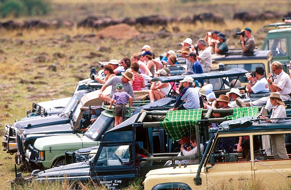 Tourists, Masai Mara Game Reserve, Kenya - 817-128007
