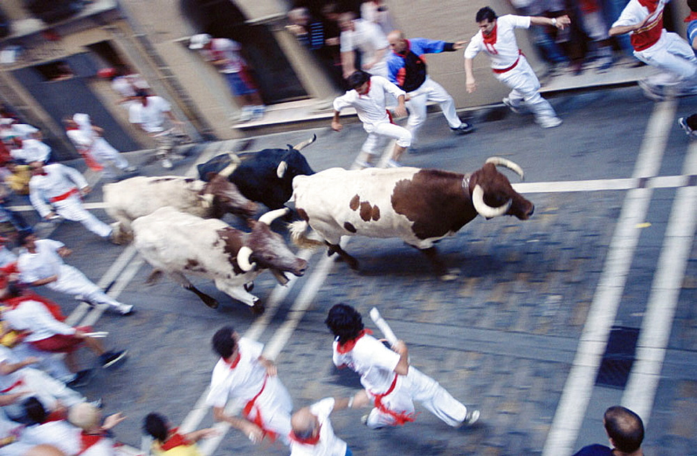'Encierro' running of the bulls, San Fermin festival, Pamplona, Navarre, Spain