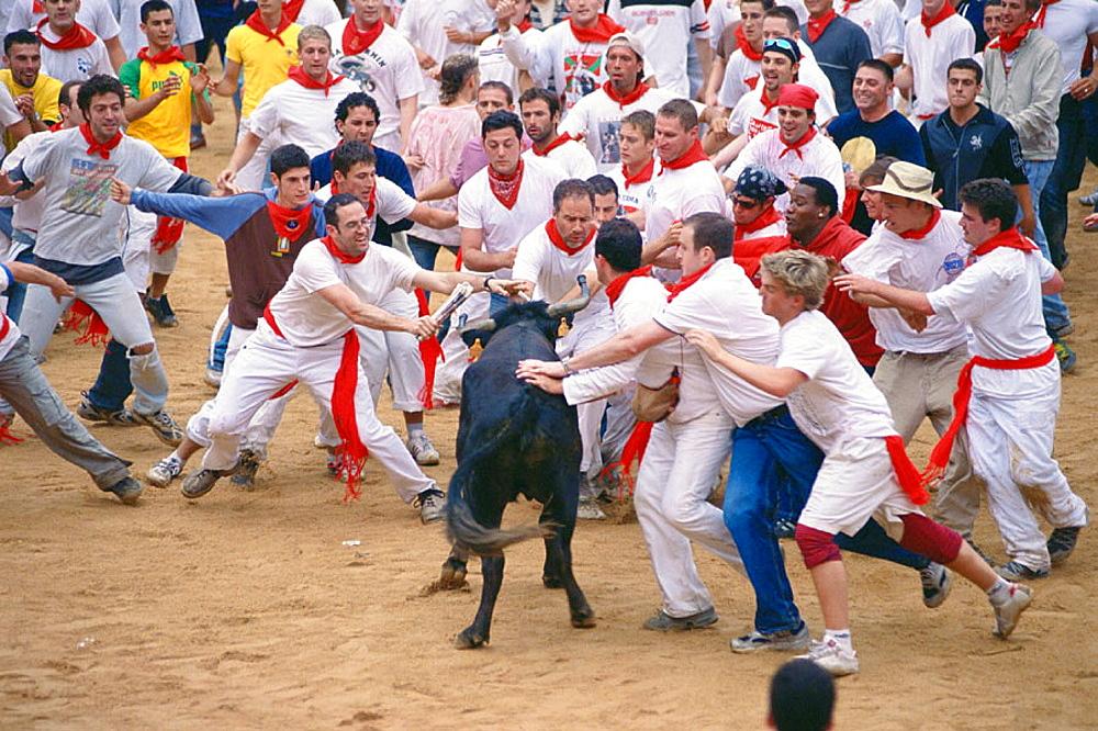 San Fermin festival, Pamplona, Navarre, Spain
