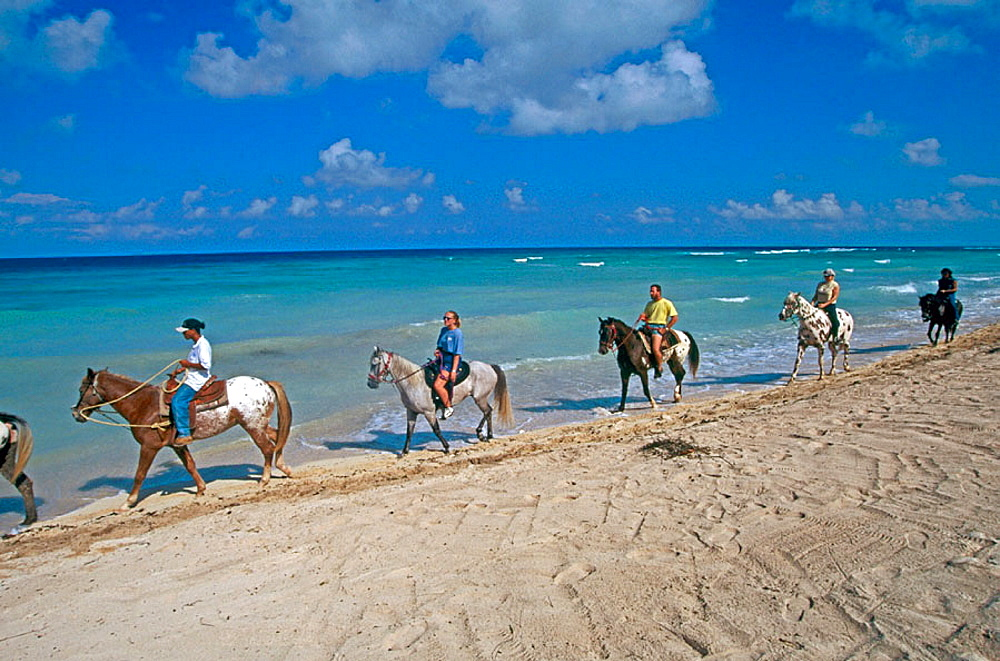 Horse riders on beach, Cayman Islands, Caribbean, UK
