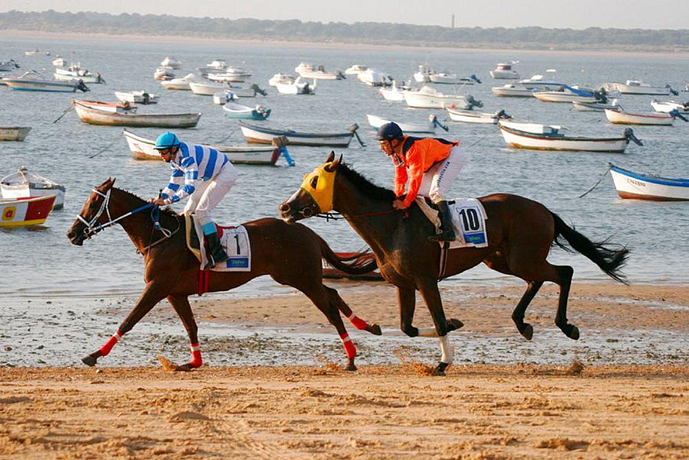 Horse race on beach, Sanlucar de Barrameda, Cadiz province, Andalusia, Spain
