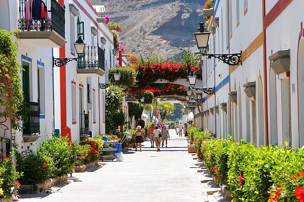 Puerto de Mogan, Gran Canaria, Canary Islands, Spain - 817-138965