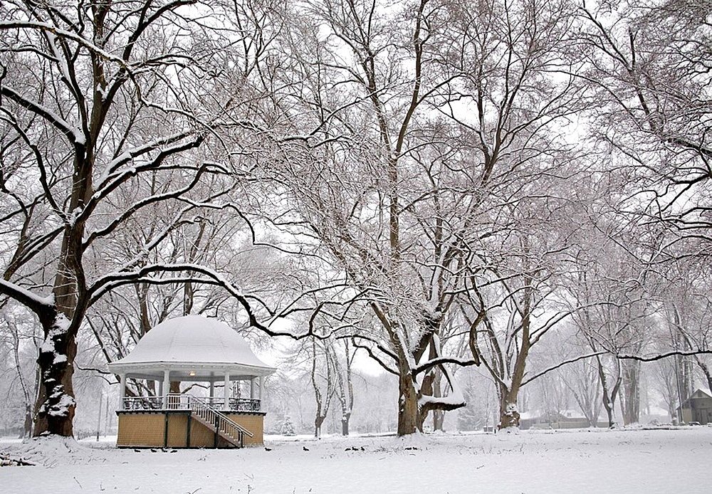 Walla Walla, WA, USA, The gazebo and sycamore trees provide a peaceful and quiet scene in the newly fallen snow, Pioneer Park