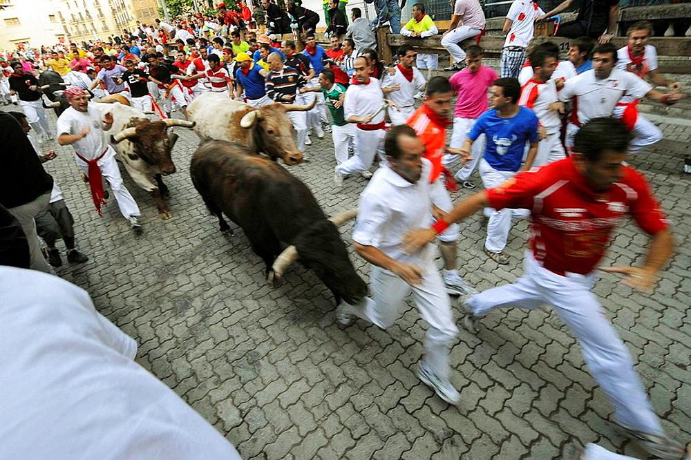 'Encierro' running of the bulls, San Fermin festival, Pamplona, Navarra, Spain